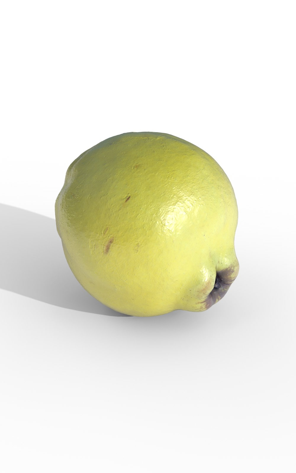 Food Fruit Quince Premium 3D Model - image 2